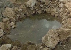 Water-mixed-with-soil.jpg