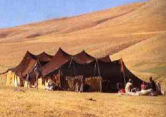 Nomads,-who-live-in-tents.jpg