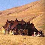 Nomads, who live in tents