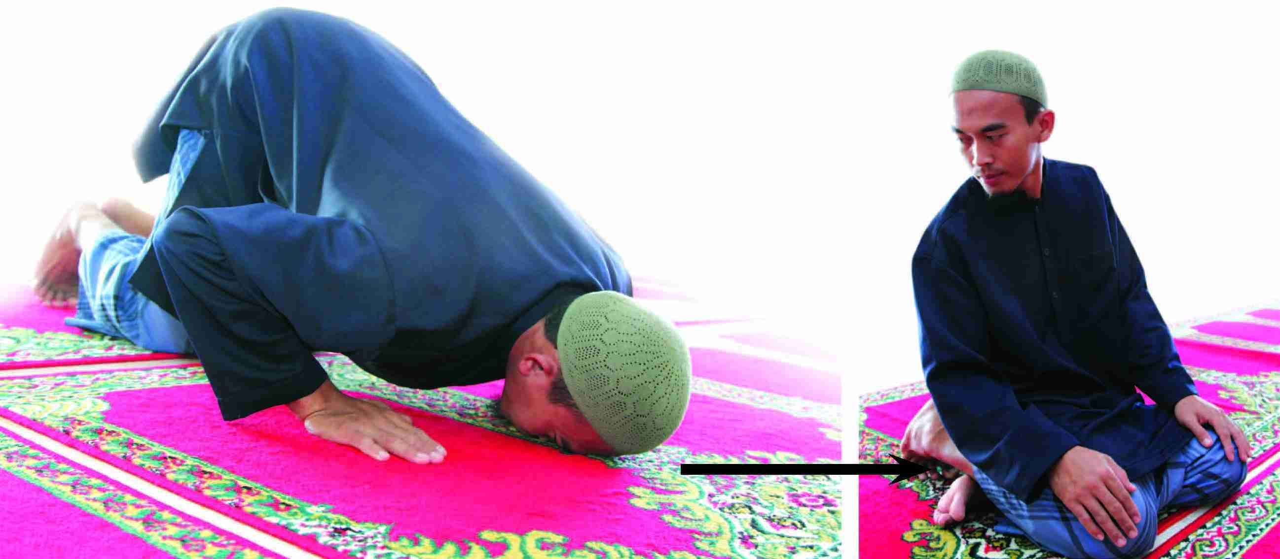 prostrations for forgetting, gratitude and due to recitation