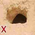 Urinating in Holes