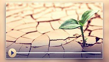 Молитва аль-истискъа - намаз о ниспослании дождя
